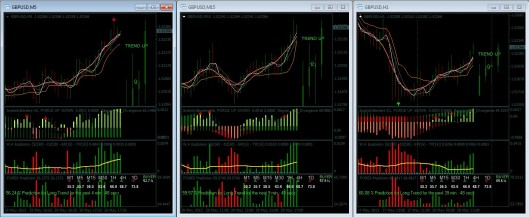 Binary options bully pdf download